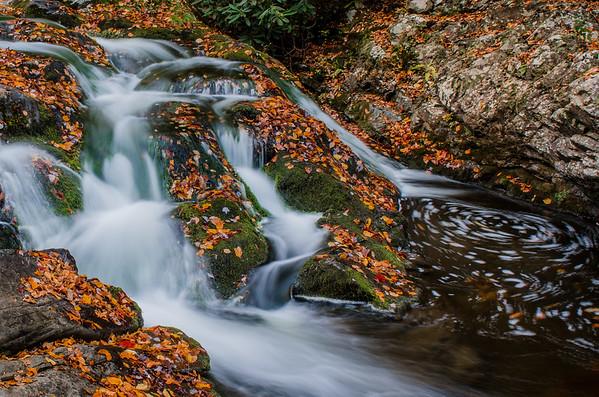 Smoky Mountains-267