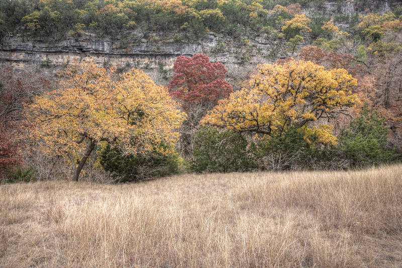 Lost Maples State Natural Area, Texas