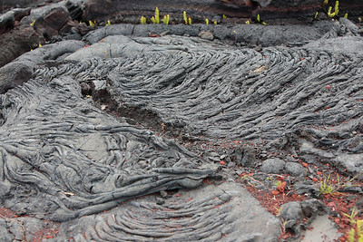 Kalapana lava field, Big Island, Hawaii.