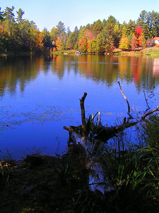 Turtle Pond, on the east edge of the village of Saranac lake, oct 2007