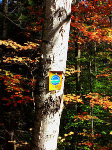 Forest Home Rd, oct 4, 2007CIMG0553a