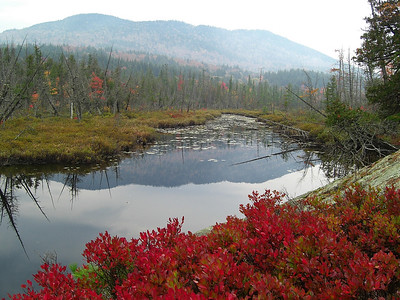 The Adirondacks -Fall, 2007