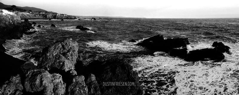 Bodega Coast, California