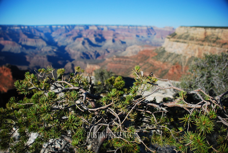 Grand Canyon Nat'l Park, Arizona