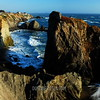 Bodega Coast, California