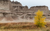 Damp fall in the Badlands