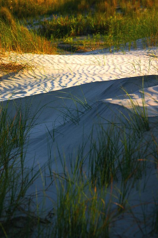 Early morning sun lights part of a dune<br> the other side will wait for the sun to get higher
