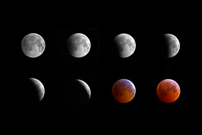 2010 Winter Solstice Lunar Eclipse Collage