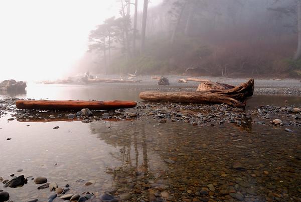 Ruby Beach Mist
