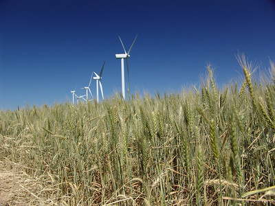 Idaho Wheat and Wind Farm