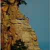 Vultures on  the cliff, Pilot Mountain, NC