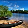 September 4<br /> The lonely canoe<br /> Bond Lake