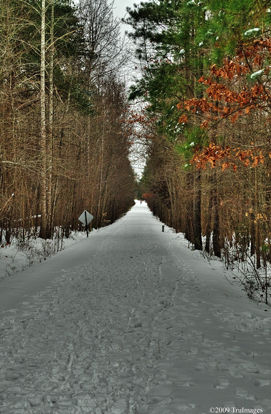 Jan 30<br /> A Winter Trail