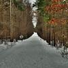 Jan 30<br /> A Winter Trail