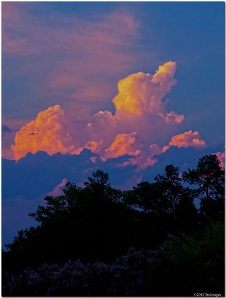 Jun 24<br /> Evening sun