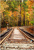 Oct 29<br /> Into the colors<br /> <br /> Another cloudy and dreary day in NC due to hurricane Sandy, but a good day to try to capture some fall foliage.. We found these abandoned railroad tracks while following in a stream in the woods. Best viewed in X2!<br /> <br /> Thanks you all for your comments on my photo yesterday!.