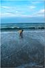 Jun 11<br /> Beach time!
