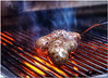 Sept 28 <br /> Grilling  time!<br /> <br /> From the archives a few days ago, grilled bratwurst to kick off football season! Sorry but didnt get out for a photo yesterday.<br /> Happy Friday everyone!