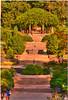 Aug 13<br /> cascading stairs<br /> <br /> Duke Gardens, Duke University, NC,
