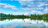 Oct 12 <br /> Clouds and reflections <br /> <br /> Happy Friday everyone! I would love to be relaxing on this lake instead of working! Best viewed in larger sizes..<br /> Thanks for the comments yesterday!!