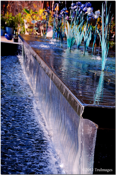 Dec 5<br /> The fountain of youth<br /> <br /> The was a beautiful waterfall fountain at Duke gardens on Duke University's campus. The waterfall was beautifully lit by the sun.Best viewed in X2 or larger!<br /> <br /> Thanks again for all of your comments!
