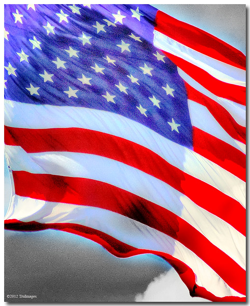 """Sept 11 <br /> ...for those who's lives were lost on 9/11/2001 <br /> <br /> 11 yrs ago today i arrived at work shortly after 9 am. A few minutes later, my boss runs into my office and says """" a plane has just crashed into the world trade center in NY!""""  I replied with a single word, 'Intentionally?"""""""