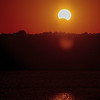 Nov 4<br /> Solar Eclipse<br /> <br /> Yesterday morning, parts of eastern US and countries east of the US had an early morning treat!  I had to crawl out of my warm cozy bed and venture out into freezing predawn temps to get this shot of the partial eclipse at sunrise! There were a few other photographers sprinkled roadside along Jordan lake so it turned into a small photo workshop! The eclipse lasted only about 20 min, then the moon moved away from the sun. Parts of Africa were able to witness the total eclipse.