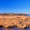 Apr 4<br /> Swamplands<br /> <br /> A sunny day on the intra coastal waterway in Wilmington NC<br /> <br /> Thanks for your comments yesterday. Busy at work so will try to catch up with everyone today!
