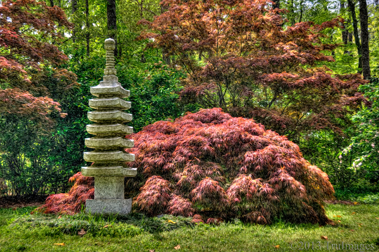 Apr 23<br /> Japanese maple garden<br /> <br /> A Japanese maple garden processed through Pixel bender. Best viewed in larger sizes to see effect.