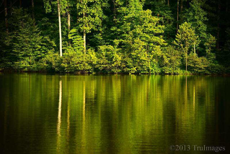 Aug 29<br /> Reflections<br /> <br /> Beautiful green reflections in a small lake<br /> <br /> Thanks for enjoying and commenting on my work!