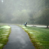 Waiting in the fog