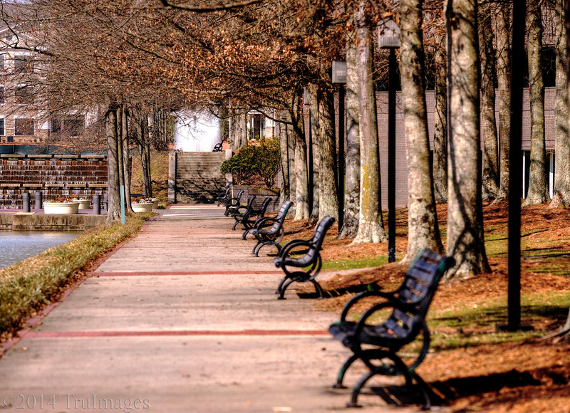 Mar 11<br /> Patiently waiting<br /> <br /> Park benches all lined up ready and waiting for spring.
