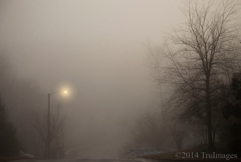 Jan 22<br /> Dim view<br /> <br /> A street light shines dimly in the dense fog.