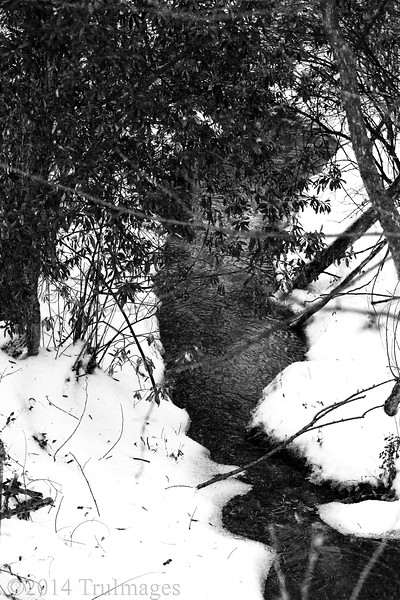 Feb 14<br /> Snowfall from winter storm Pax makes this ordinary stream very photogenic.<br /> Happy Valentines Day!