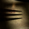 Feb 16<br /> Shape = E<br /> <br /> A shodow of an E from a fork.