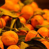Fruits of the season