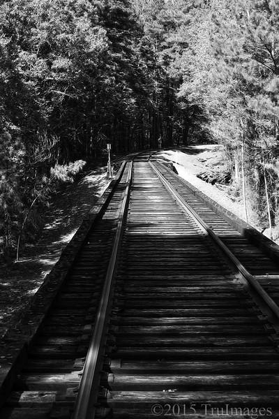 Weathered Tracks
