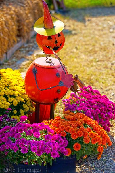 The Pumpkin Piper
