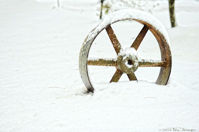 Snow Tires Needed!