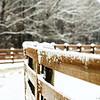 Let it Snow....Let it Snow!