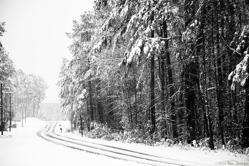 Wintry Trail