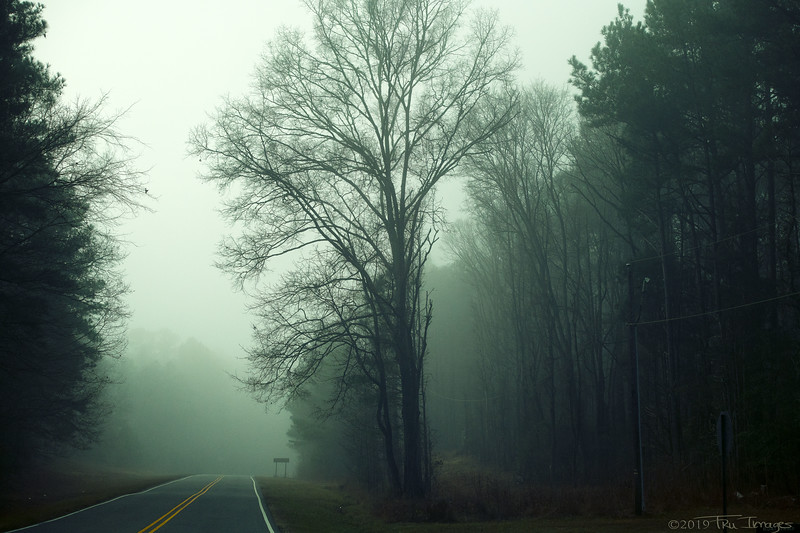 Into the Fog II