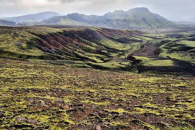 Moss & Igneous Rock, Landmannalaugar