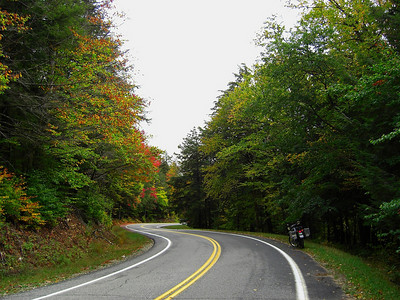 Forest Home Rd - downhill into a series of 7 linked S-turns- midway