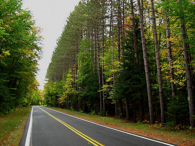 Forest Home Rd - straight  near  Lake Clear end of the road
