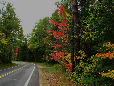 Forest Home Rd - into a left turn