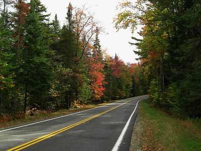 Forest Home Rd - straight  and into a right sweeper