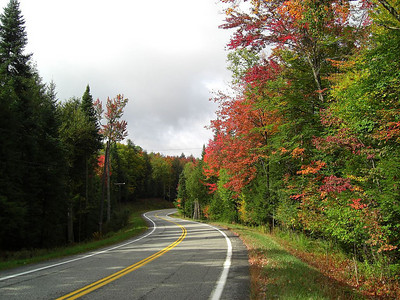 Forest Home Rd - a gentle S-turn