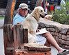 "Caught in the Act!<br /> <br /> This man and his dog were enjoying a break at an overlook in Grand Canyon Village; he was reading and his pal was people-watching.  I thought it made for an interesting shot, but just as I was about to hit the shutter, the man's peripheral vision must have registered ""Paparazi!"" and I was discovered.<br /> <br /> He didn't seem to mind, and the dog never batted an eye.<br /> <br /> He's probably used to it."