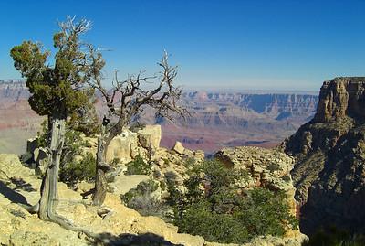 nov 7, 2007, @  10:30am, Grand Canyon National Park - the South Rim at Moran Point